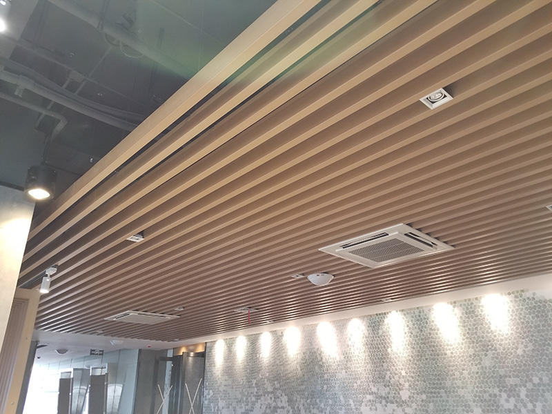 Ceiling System - 2