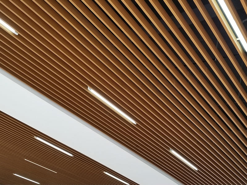 Ceiling System - 3